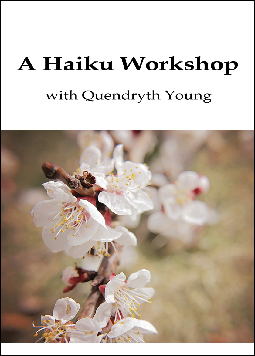 A Haiku Workshop Quendryth Young