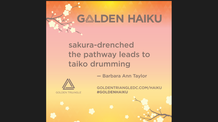 Golden Haiku Barbara Taylor